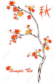 Maple Tree Symbolism by 100 Tree Meaning Friends Of Carmel Forest Tree Tour With Dr