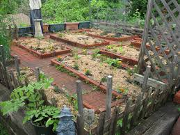 companion vegetable garden layout small space vegetable gardening in new england dream new england