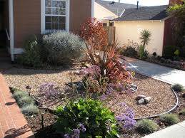Landscaping Ideas For Backyards by Drought Tolerant Backyard Landscaping Ideas Drought Tolerant