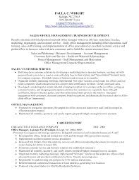 entry level business analyst resume examples example of resume profile resume professional profile examples sample resume profiles qualifications for resume examples resume profile examples shol1l8l sample resume profileshtml profile