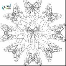 fabulous preschool butterfly coloring pages with butterfly color