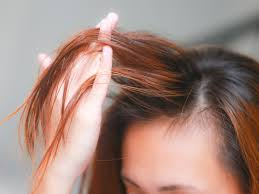 Shampoo For Dry Hair And Hair Loss How To Apply Castor Oil For Hair 15 Steps With Pictures