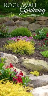 garden rockery ideas 25 best rock wall gardens ideas on pinterest rock wall garden