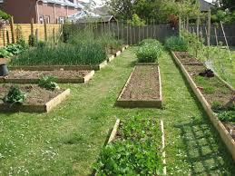 companion vegetable garden layout triyae com u003d backyard raised garden plans various design