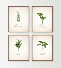 Kitchen Wall Pictures Kitchen Prints Set Of 4 Herbs Kitchen Wall Decor Dining Room