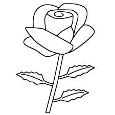 rose coloring page valentine u0027s day