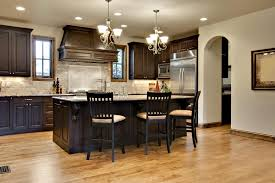Cabinet Styles For Kitchen 46 Kitchens With Dark Cabinets Black Kitchen Pictures