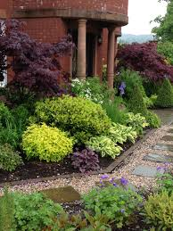 mixed plants u0026 shrubs border lookit that johnson u0027s blue hardy