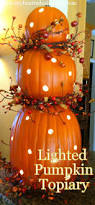 Thanksgiving Pumpkin Decorating Ideas 219 Best Home Decorating Fall Images On Pinterest Fall