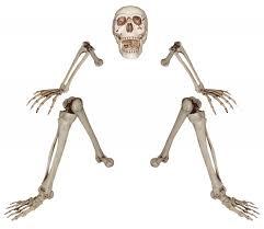 halloween pathway lights skeletons skulls and bones props all nightmare factory costumes