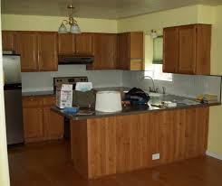 Oak Kitchen Cabinets Refinishing Kitchen Cabinets Painted Home Painting Ideas