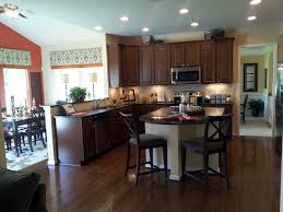 dark kitchen cabinets with wood floors green wall paint colors