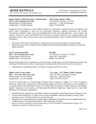 Example Job Resume by Usa Jobs Resume Format