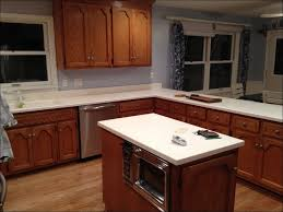 100 can kitchen cabinets be refinished how to paint