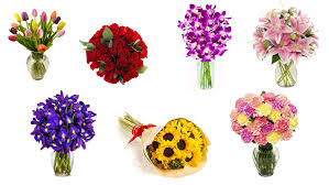 Best Mens Valentines Gifts by Top 10 Most Romantic Flowers For Valentine U0027s Day