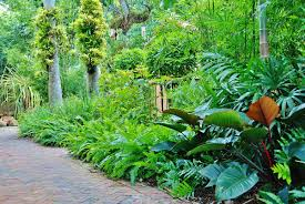 best landscape design in miami south florida