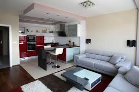 apartment cozy decoration apartment interior design ideas with