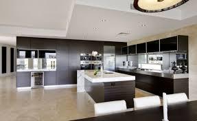 Contemporary Kitchen Design Ideas by 100 Unusual Kitchen Designs Kitchen Designer Kitchen Sinks