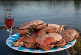 Horten   Official travel guide to Norway   visitnorway com Visit Norway Crab  Horten
