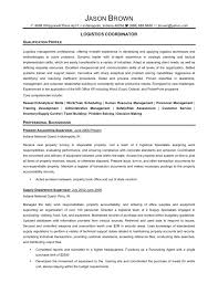 Example Resume  Senior Consultant And Contry Risk Analiyst For Sample Senior Business Analyst Resume With