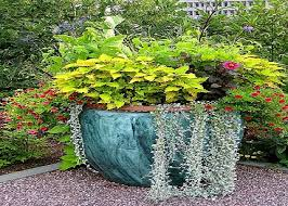 garden container ideas potted plant ideas container gardening