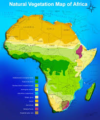 Physical Map Of Africa by Africa Political Map Africa