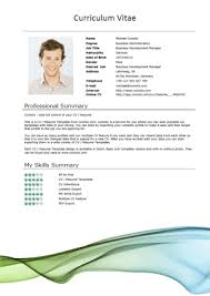 Free CV Resume Templates   HTML PSD  amp  InDesign     Web     Pinterest modern resume template microsoft word  resume skills nanny       modern resume layout