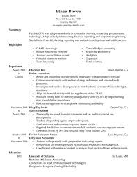 Financial Resume Sample by Best Accountant Resume Example Livecareer