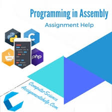 Programming in Assembly Computer Science Assignment Help