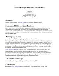 Examples Of Resumes Project Manager Mining Resume
