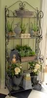 best 25 herb pots ideas only on pinterest diy herb garden
