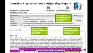 CheckForPlagiarism net   Students and Researchers Plagiarism Report Format Excerpt