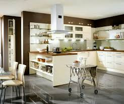 Built In Kitchen Cabinets Fetching White Color Modern Kitchen Cabinets With Built In Oven