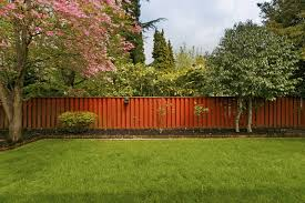 modern 23 backyard tree ideas on 25 exotic backyard landscape