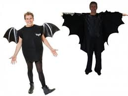 Bat Costumes Halloween Animal Halloween Costumes Men Women Hubpages
