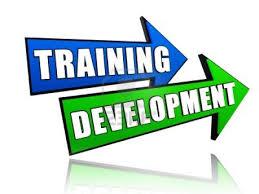 provider training iso, pelatihan manajemen sdm, hr management, develop sdm
