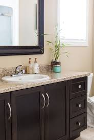 Bathroom Idea Images Colors Best 25 Dark Vanity Bathroom Ideas On Pinterest Dark Cabinets