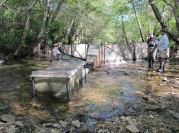 The report outlines how to use the matrix and provides examples based on the Scott Creek case study  FISHBIO