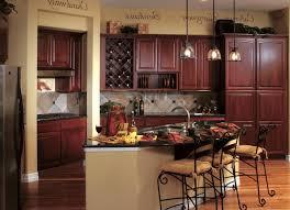 100 black kitchens cabinets interior kitchen white kitchen