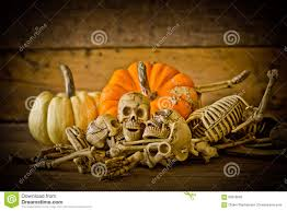 human skull on wood background skeleton and pumpkin on wood