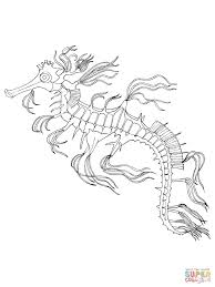 sea horse coloring page free printable coloring pages