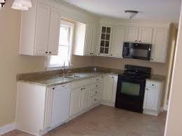 Vintage Kitchen Backsplash Kitchen Room Vintage Looking Kitchen Appliances Organizing A