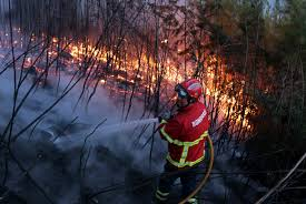 Wildfire Credit Union by The Latest Greece Seeks Eu Help With Major Forest Fire Boston