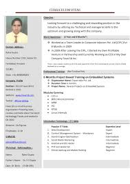 entry level business analyst resume examples professional cv services india downloadable resume templates word sample cv template free document ms for business administration with exper sample