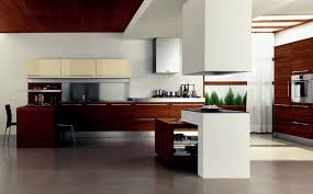 plain contemporary kitchen cabinets design home decor idea n inside