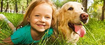 Real stories of how kids have convinced their parents to get a dog  even after their parents first said  quot No  quot
