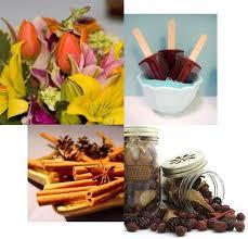 160 best air fresheners images on pinterest air freshener