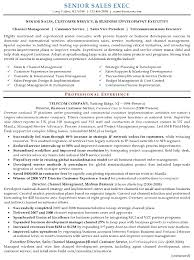 Aaaaeroincus Marvelous Example Software Developer Resume Sample