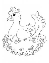 farm animals coloring pages hen animal coloring pages of