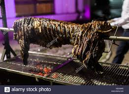 roasting pig barbeque outside party stock photo royalty free